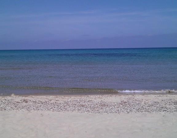 mare dell'ultima spiaggia marzo 2015